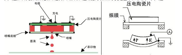 喷墨打印技术的主要原理分为两类(见图1):喷墨方式可分为连续式及非连续式(或称DOD-按需式)两大类,而非连续式的打印方式又可依墨水喷出动力机构的不同,分为热发泡式(Thermal bubble)及压电式(Piezoelectric)。  图1 喷墨技术分类 喷墨的速度取决于两项主要的因素:一为墨滴频率(每秒有多少墨滴) ,另一为墨滴大小。而喷墨头的重量也会影响到速度,如重量轻的喷墨头在加速和降速上就比较容易控制。至于分辨力则与两项主要的因素有关:一为喷墨头每一管道的间隔距离,另一因素为墨滴大小。 一、C